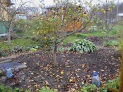 На заметку садоводу в октябре