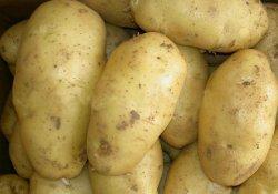 Лекарственное применение картофеля
