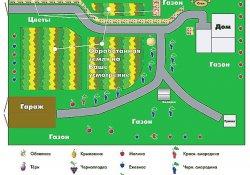 Выбор стиля и планирование участка