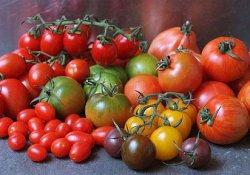 Сорта разноцветных томатов