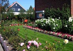 Особенности голландского стиля ландшафтного дизайна