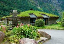 Зеленые крыши в вашем саду