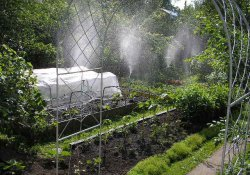 Декоративное оформление садового участка