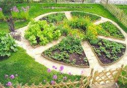 Создание детской клумбы на садовом участке
