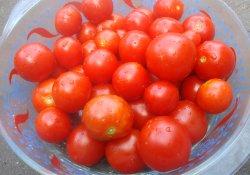 Засолка томатов