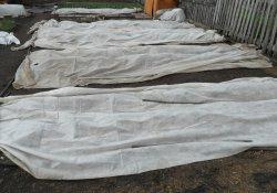 Как защитить посадки от весенних заморозков?