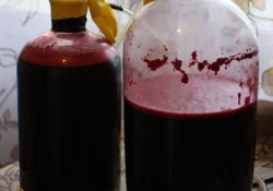 Вино из вишен